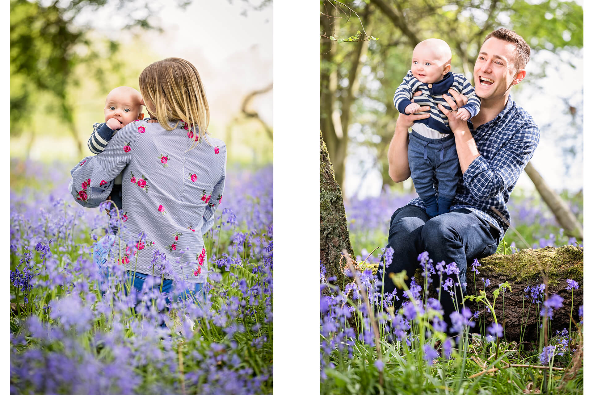 bracknell-bluebell-photographer